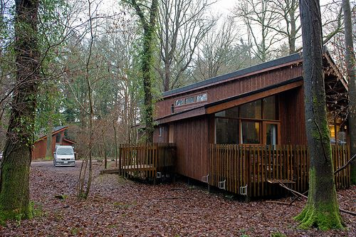A Log Cabin In The Forest Of Dean Gloucestershire Uk Cabin Forest Of Dean Log Cabin