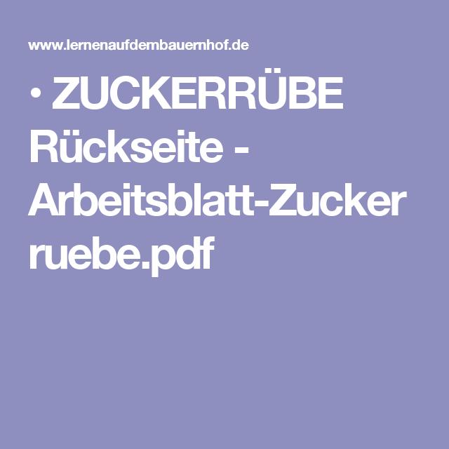 ZUCKERRÜBE Rückseite - Arbeitsblatt-Zuckerruebe.pdf | Thema Zucker ...