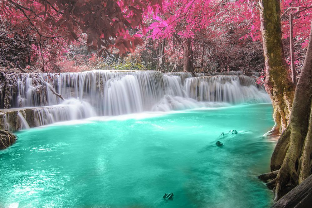 High Quality Natural Scene Photo Buy Cheap Natural Scene Photo Lots From High Quality China Natural Scene Photo Forest Waterfall Beautiful Waterfalls Waterfall