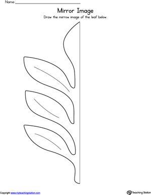 leaf mirror image worksheet shapes worksheets kindergarten worksheets shapes worksheets. Black Bedroom Furniture Sets. Home Design Ideas