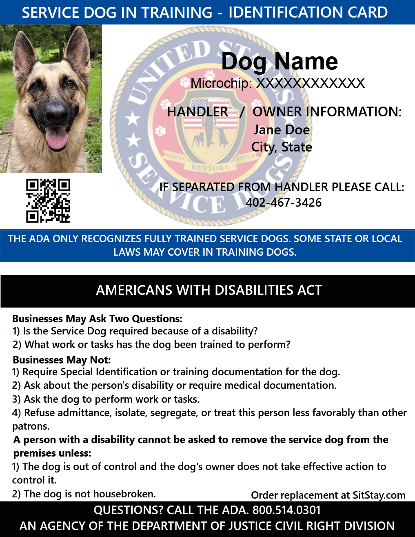 Service Dog In Training Mesh Vest Starter Kit Medication