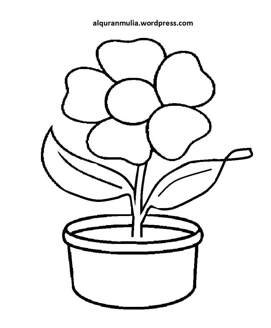 Pin Oleh Novian Di My Saves Gambar Bunga Bunga Warna