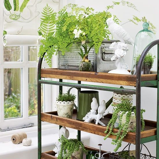 Image Result For Visual Display Garden Center: Indoor Plants, Garden Shelves