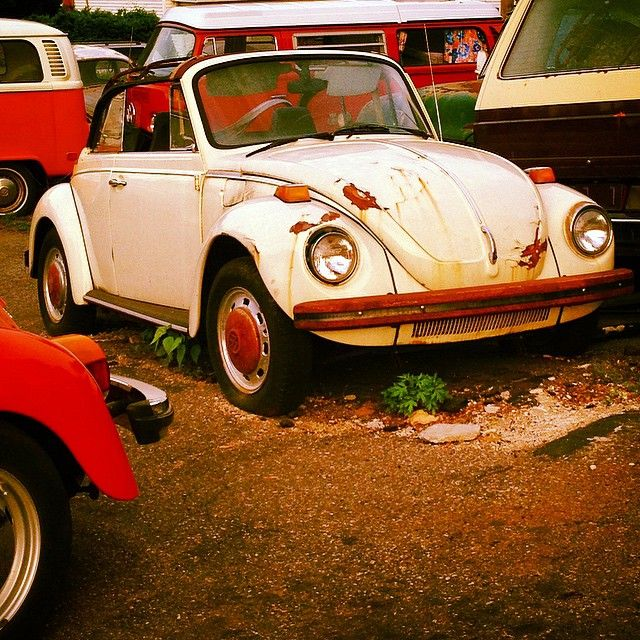 Punch buggie yellow #beetle here is looking for some loving care! #Volkswagen #car #automotive #fridayfun #vintage #rusty