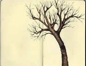 pictures of trees to draw - Bing Images