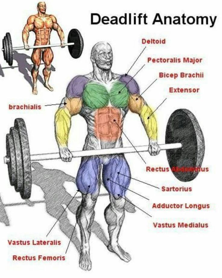 Bodybuilding T Shirt Training Muscle DEADLIFT OR DIE Crossfit