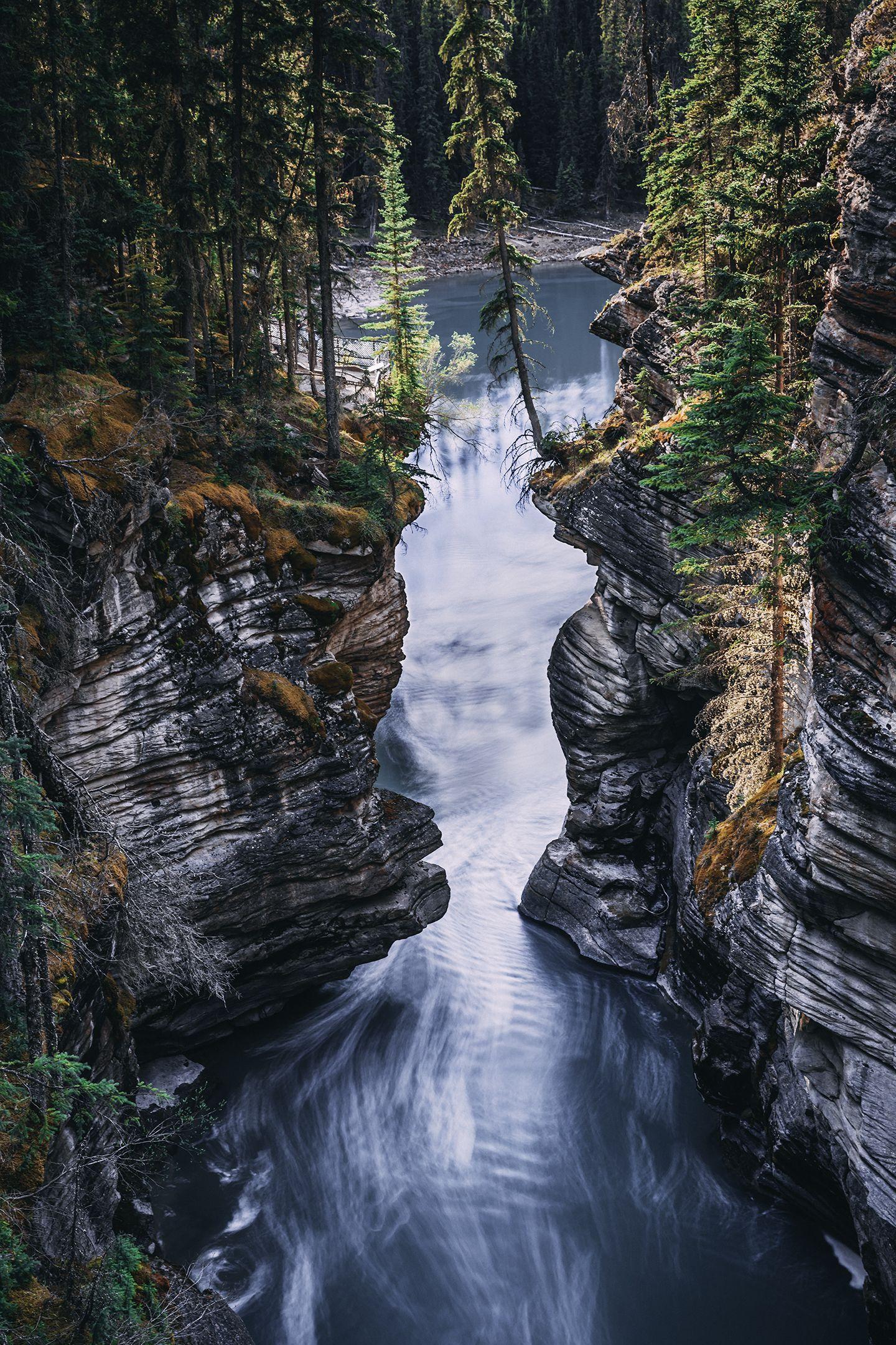 Athabasca River Alberta Canada Jason R Wilson Landscape Athabasca River