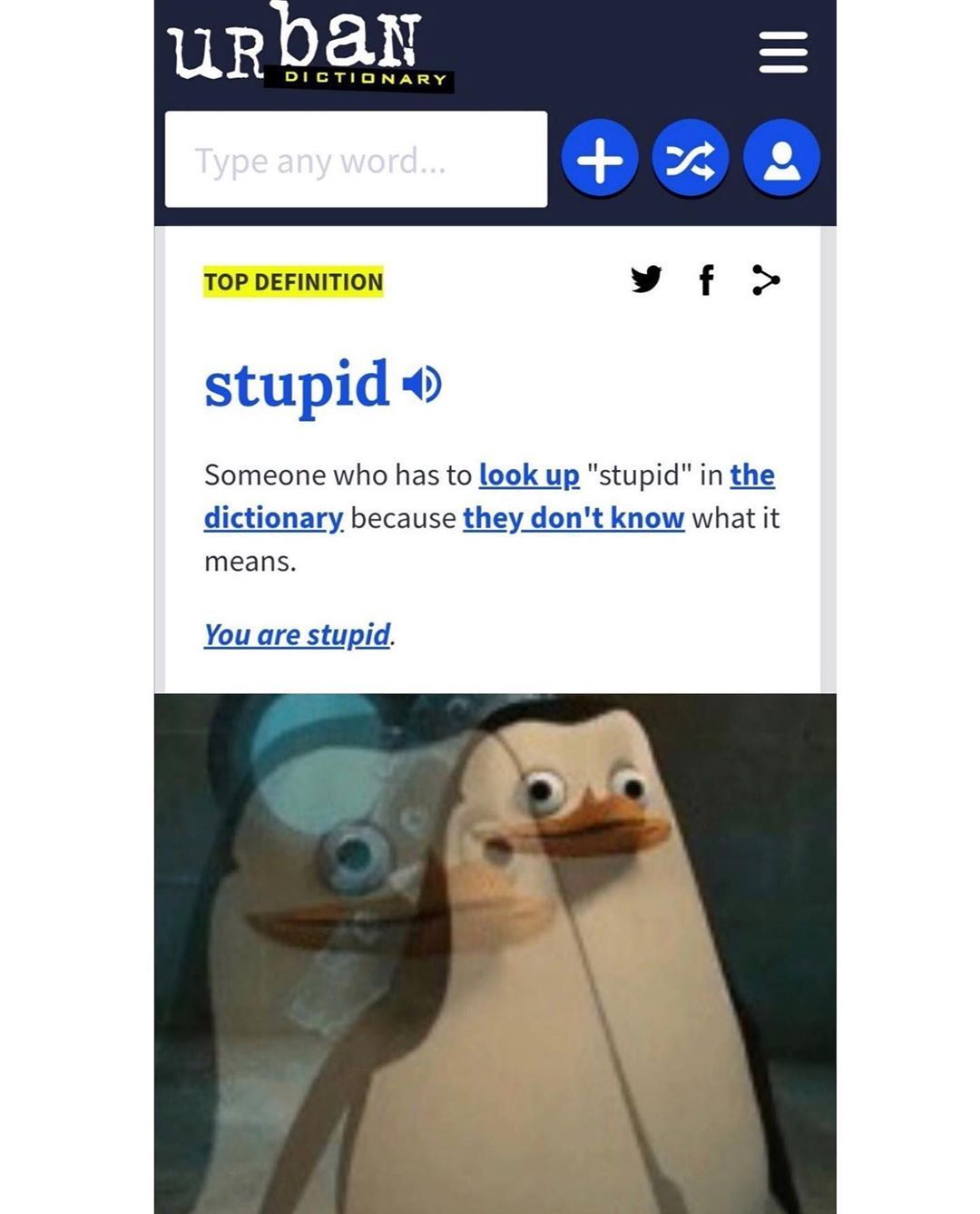 Definition Of Stupid Beerlife Really Funny Memes Stupid Memes Funny Relatable Memes