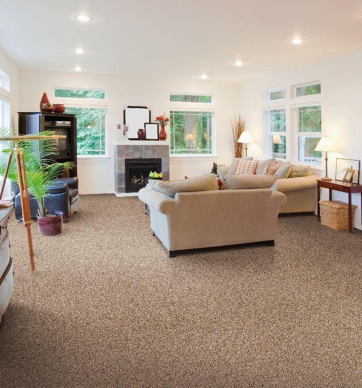 Living Room / Salon Beaulieu Canada Carpet / Tapis