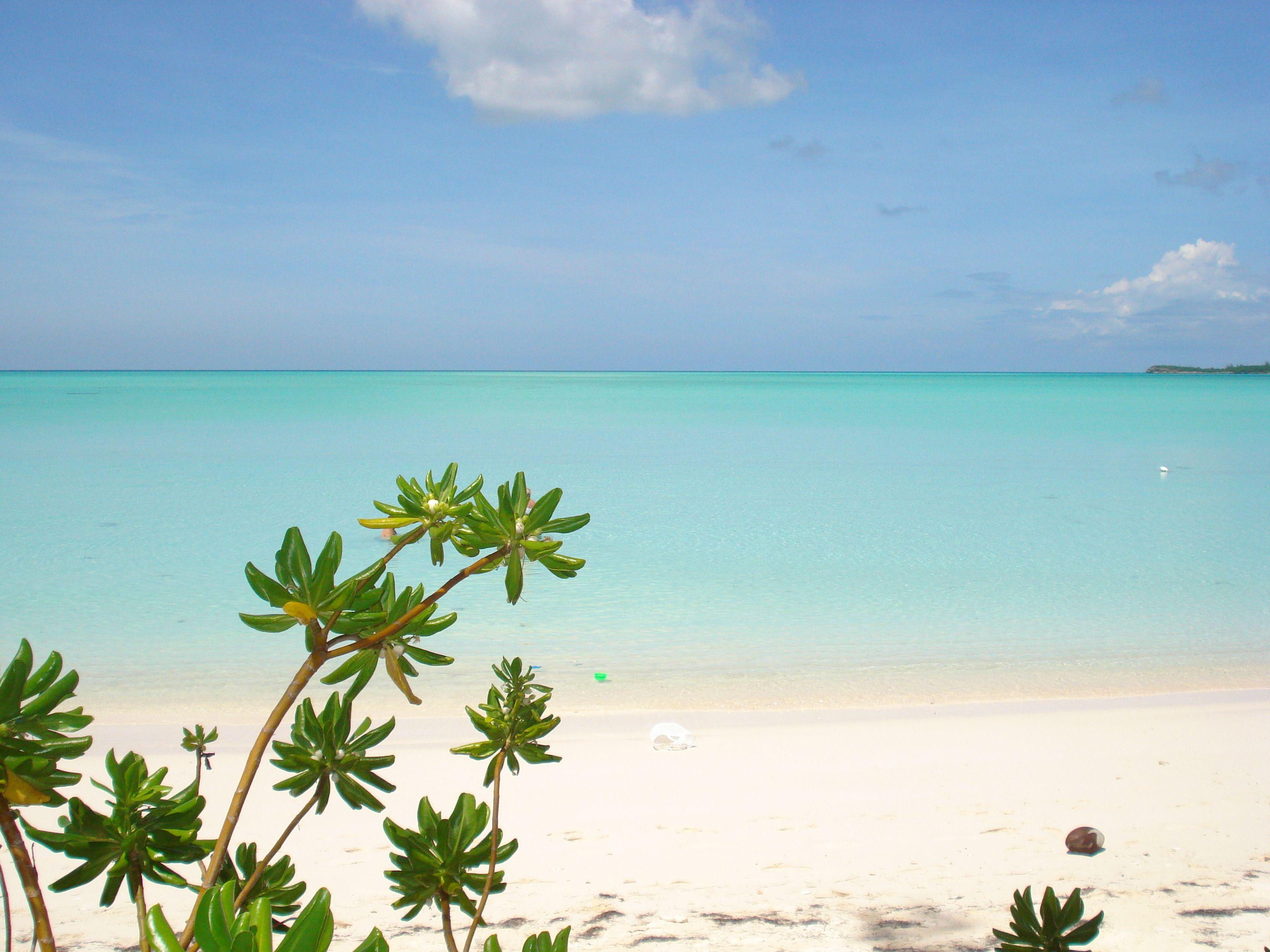 spanish wells, bahamas | favorite places | places, bahamas