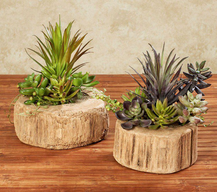 D co bois flott jardini res design plantes succulentes et table en bois massif plante for Pot de plante design
