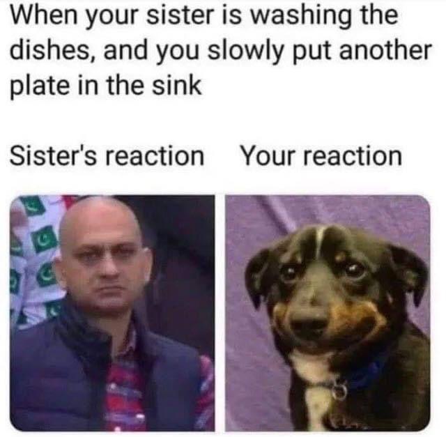 45 Memes People Seem To Really Enjoy