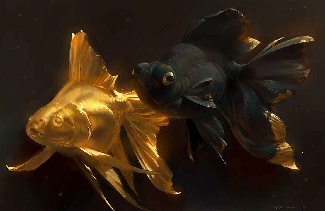 Golden Fish Images