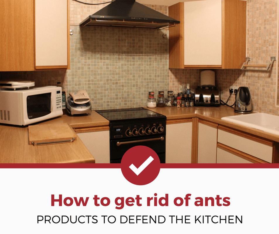 d60527b7ad9f76d71dbb50070e68e44f - How To Get Rid Of Ants In Food Cupboard
