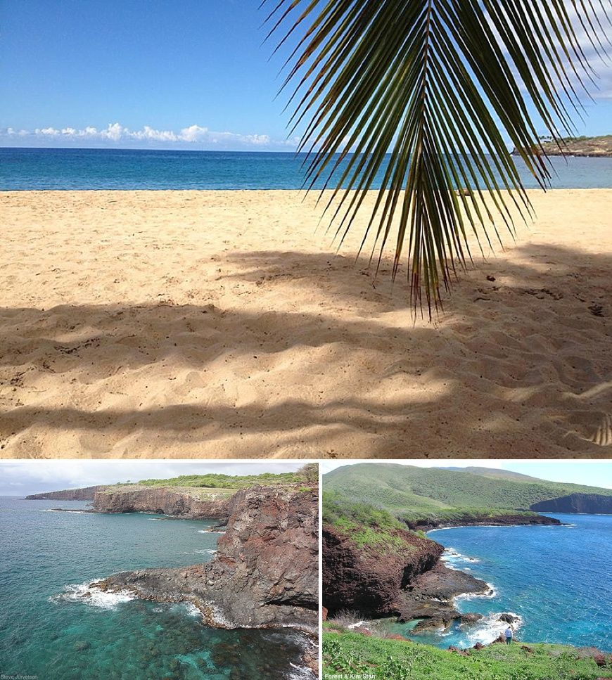 Kidfriendly Activities that Everyone Can Enjoy Maui