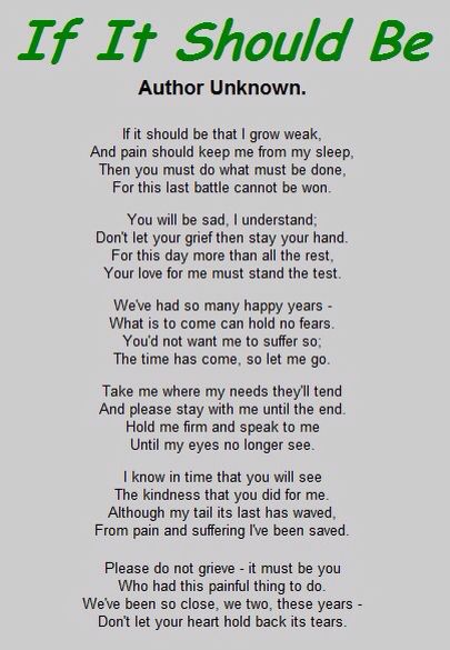 If It Should Be By Author Unknown Pet Poems Pet Loss Grief Pet Grief