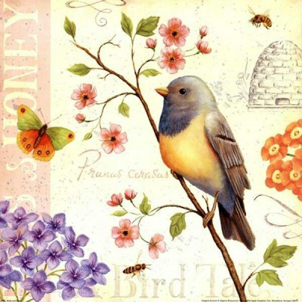 Little Pink Flowers Pajaros Vintage Ilustracion De Ave Pajaros Y Flores