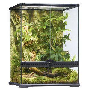 Exo Terra Allglass Terrarium #Glass terrarium#Glass terrarium for reptiles#Glass terrarium for amphibians