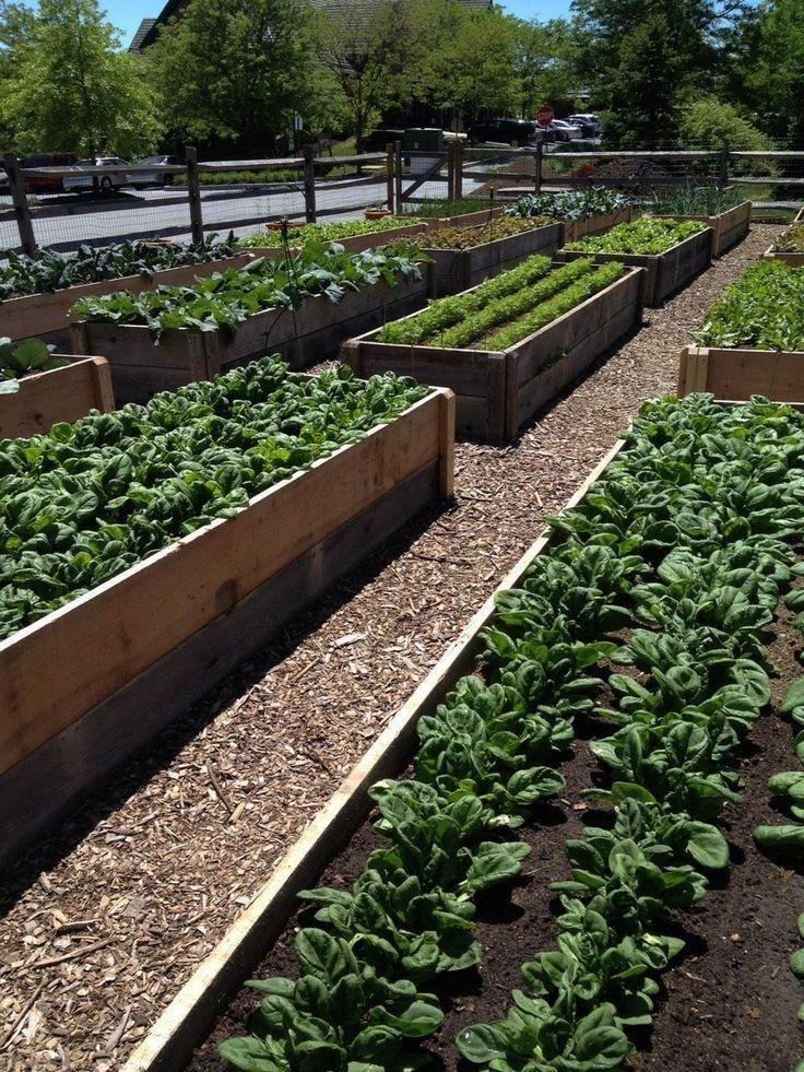 Ideen Für Einen Schönen Garten Ratgeber: 36 Ideen Für Einen Schönen Und Frischen Gemüsegarten, Die
