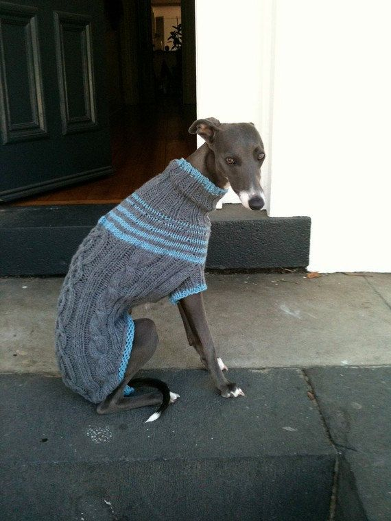 Whippet sweater pattern PDF file ONLY | Hunde | Pinterest | Hunde ...