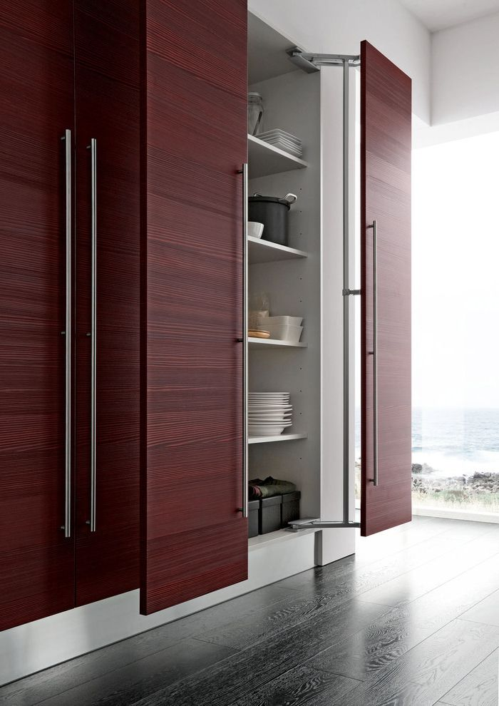 Contemporary Kitchen Cabinet With Large Door Handle