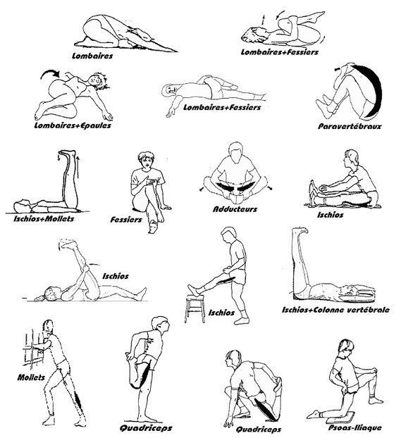 Etirements | Exercices pour s'affiner, Étirements