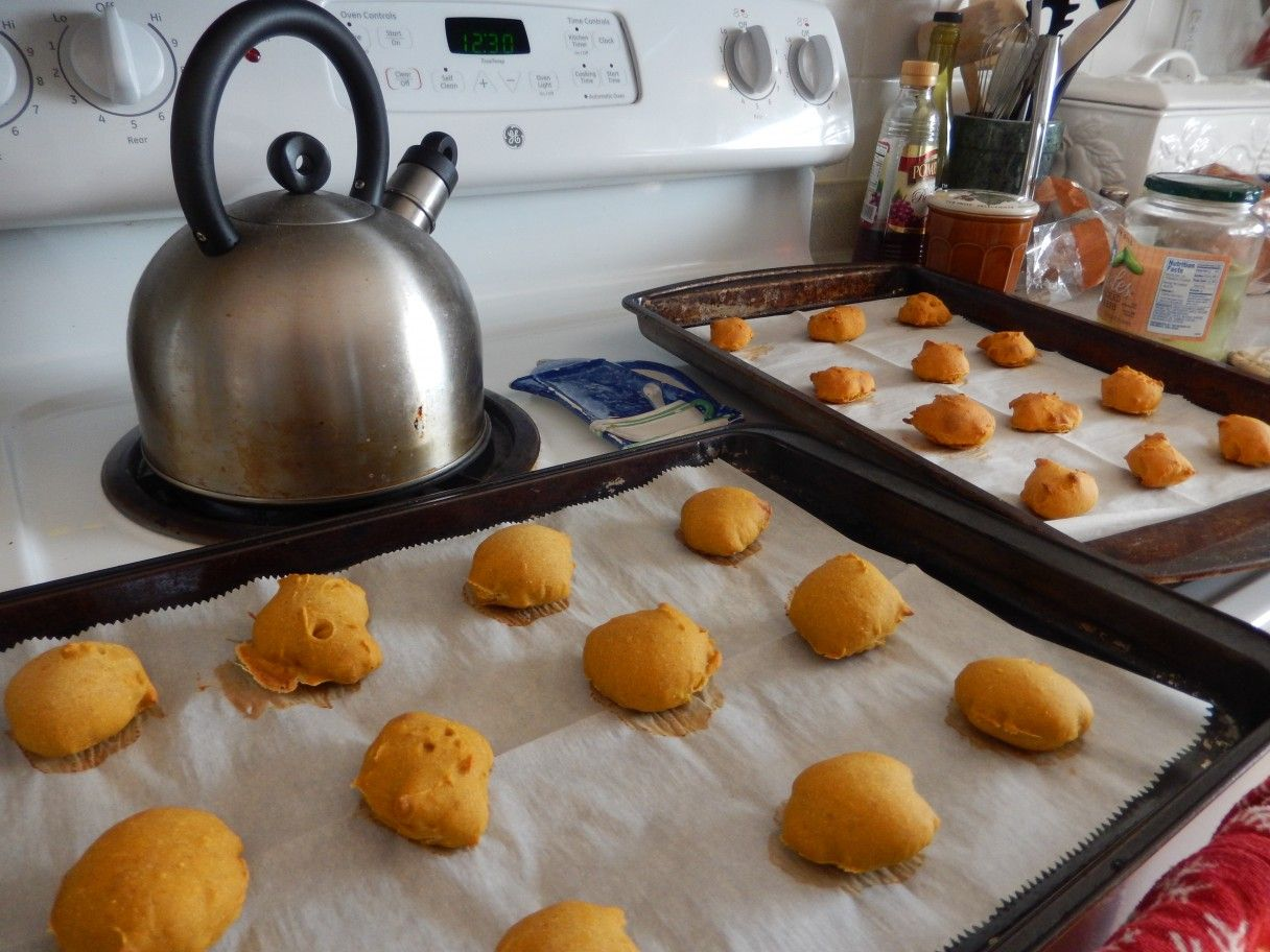 EasyToMake Pumpkin Recipes for Dogs (With images