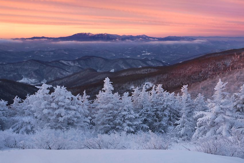 Roan Mountain Tn In Winter Smoky Mountain Christmas