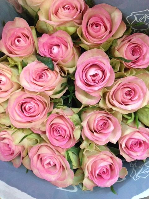 Rose Lovely Jewel Sold In Bunches Of 20 Stems From The