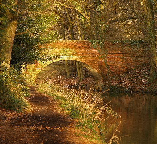 Photo was taken by Anguskirk as the sun was going down in early February at Stacey's Bridge, built in 1792, Basingstoke Canal at Dogmersfield, Great Britain.