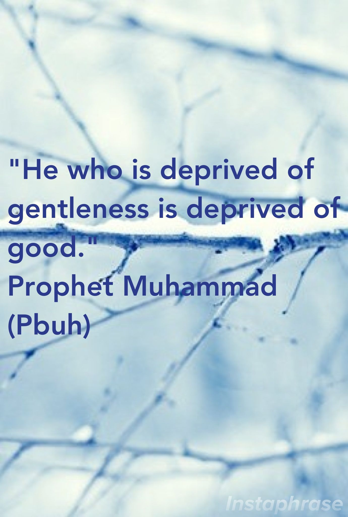 He who is deprived of gentleness is deprived of good.  Prophet Muhammad (Pbuh)