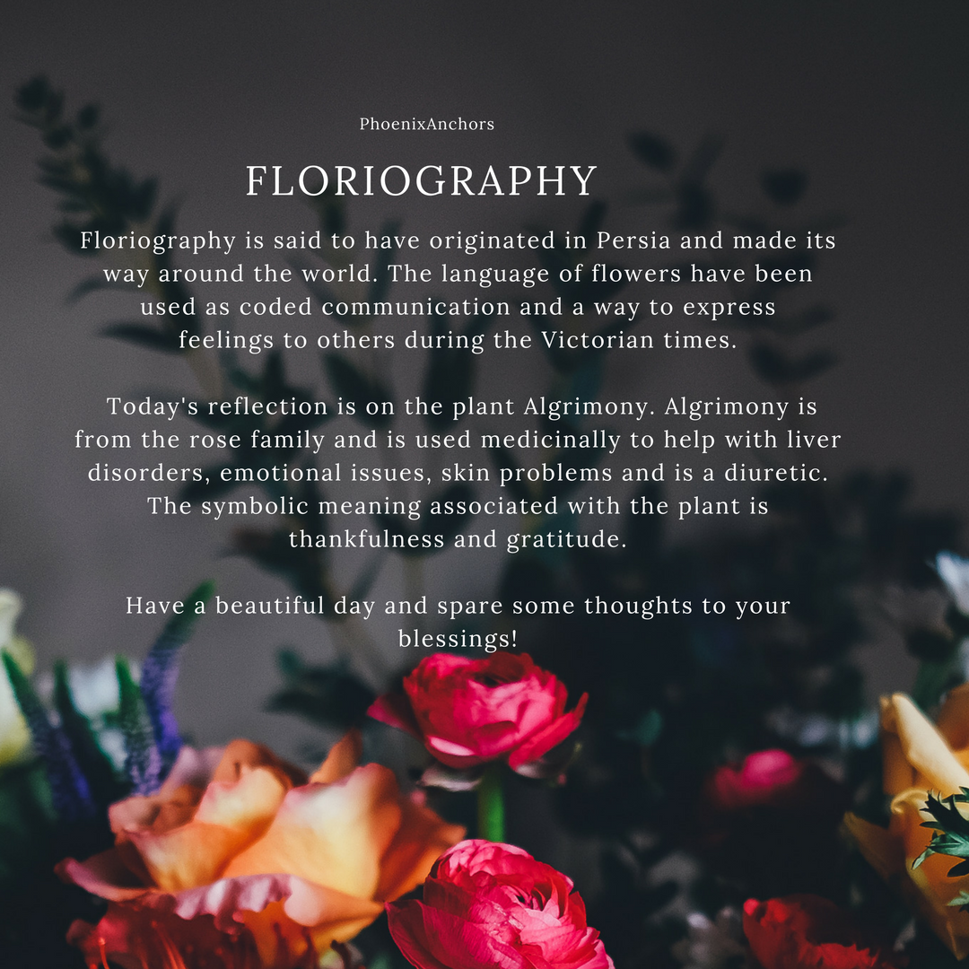 Floriography And The Symbolic Meaning Of Plants Natural