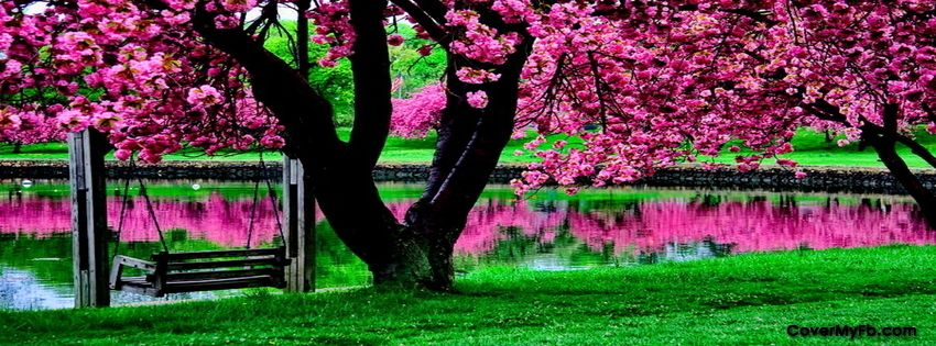 Spring Facebook Covers, Spring FB Covers, Spring Facebook Timeline ... | ∞ Cσvєr Pнστσs ∞ | Pink ... - photo#2