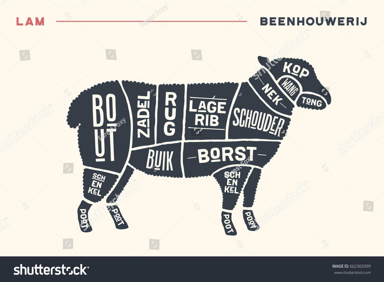 d6098fecc94d505181b8521299a24814 meat cuts poster butcher diagram and scheme lamb vintage hand