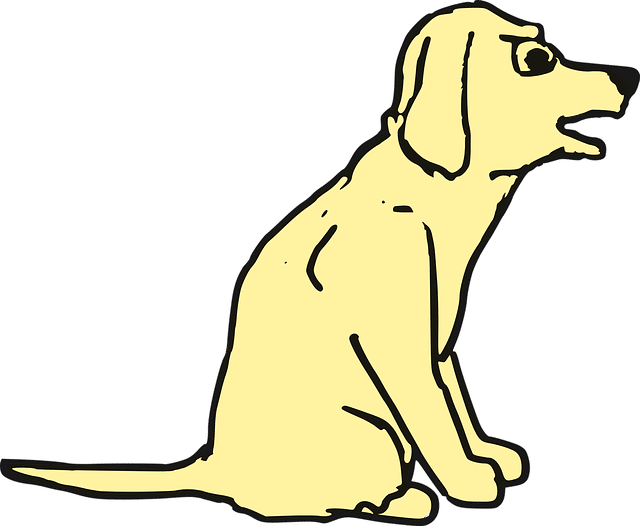 bellen beim klingeln hunde u katzen pinterest hunde hunde erziehen und der mops. Black Bedroom Furniture Sets. Home Design Ideas