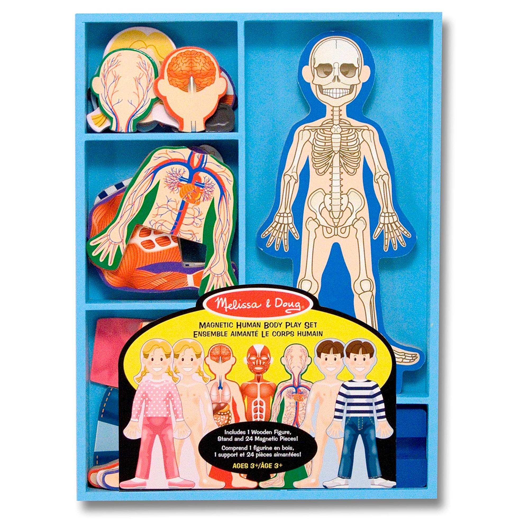 Melissa Amp Doug Magnetic Human Body Anatomy Play Set And