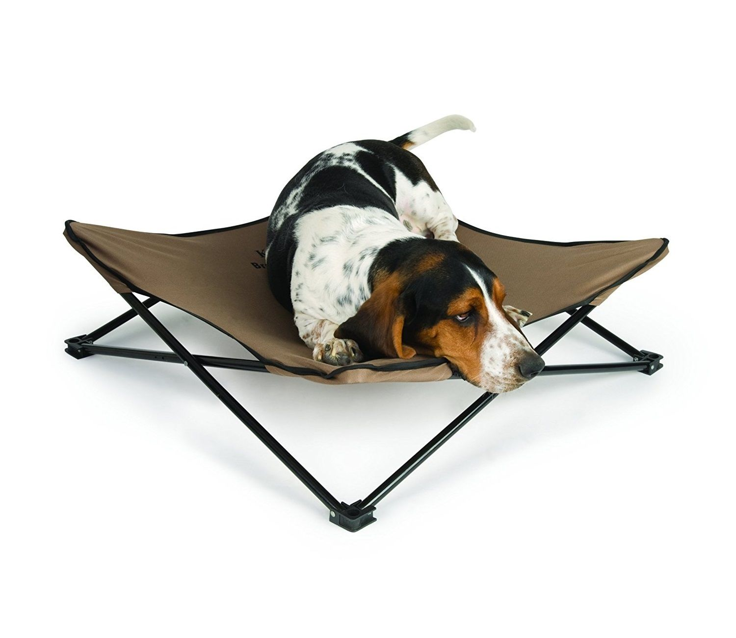 Small Elevated Pet Bed Green Hammock Cooling, Waterproof