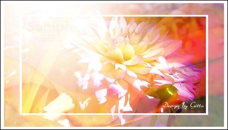 - BILD KLICKEN - Digitaler Blumentraum 02  als Collage Bilder gearbeitet ist Fotokunst die auf Artflakes als Poster, Kunstdruck, Leinwand und Galeriedruck zu bestellen ist  Bilder für alle Wohnwände wie Wohnzimmer, Schlafzimmer, Büro, Flur oder auch für eine Praxis. Mit Apophysis entstehen schöne Bilder in Digital Art.Das ist Digitale Kunst in Fineartprint. - Auch auf meiner Homepage - www.bilddesign-by-gitta.de - unter Meine Shops - Artflakes zu finden.