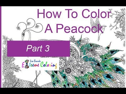 How To Color A Peacock Part 3 Colored Pencils Color By