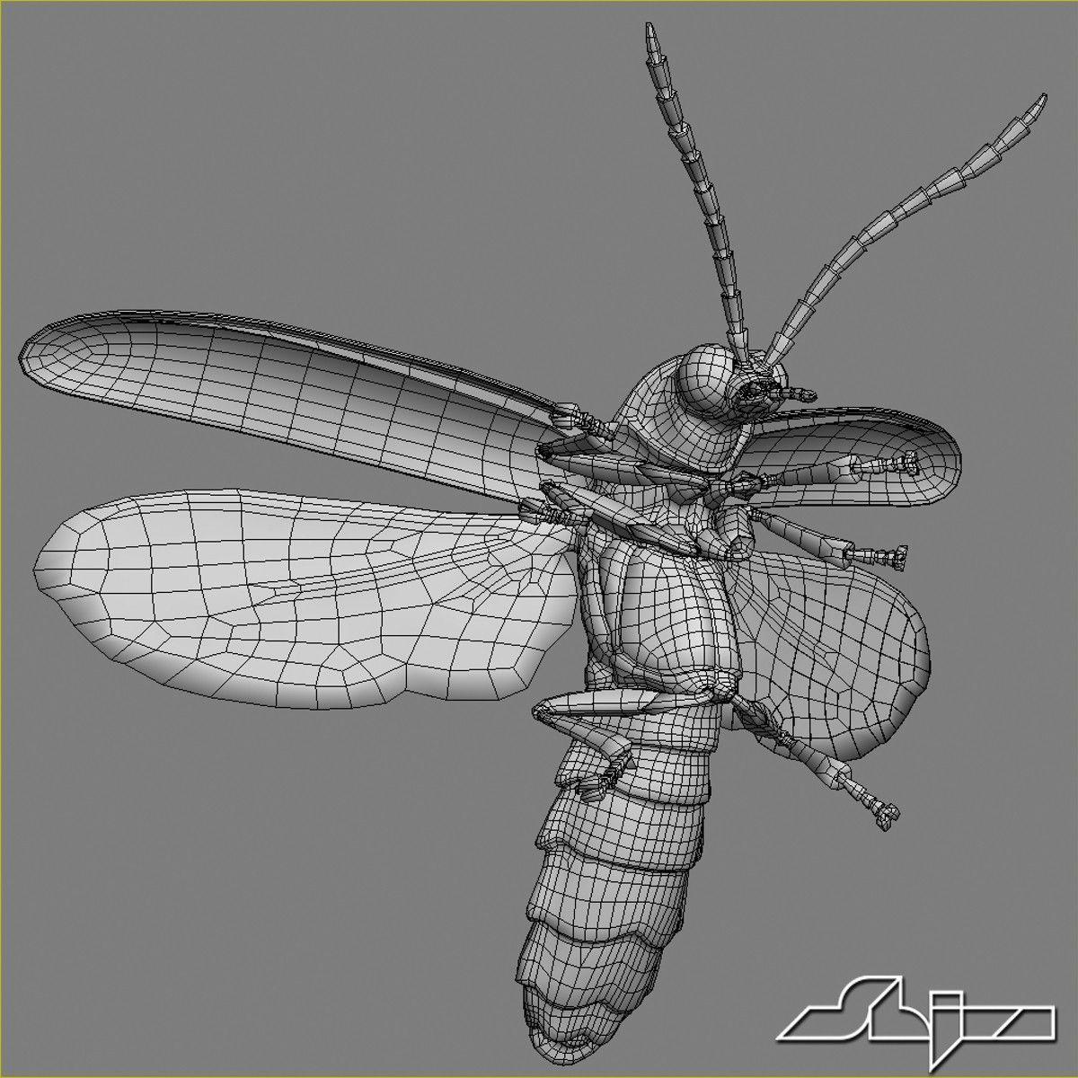 max firefly bug flying pose   Bug inspiration   Pinterest