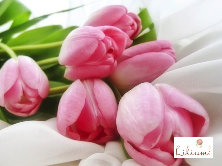 LAS MEJORES FLORES A DOMICILIO. ¿Sabe cuál es el significado de regalar flores en color rosa? El rosa es un color suave, asociado a la femineidad. Representa delicadeza, bondad y ternura. Las flores en este color, son de una sutil belleza que en conjunto, brindan a cualquier espacio una vista armónica. En Lilium contamos con hermosos diseños florales realizados con distintos tipos de flores. Le invitamos a ingresar a nuestro sitio web www.lilium.mx para que pueda elegir el que más le agrade.