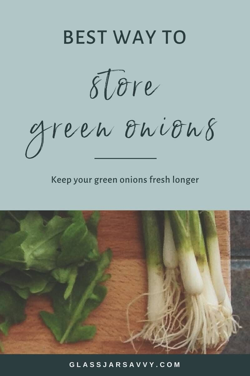 Best way to store green onions to keep them fresh green