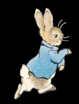 Peter Rabbit | Easter Eggs | Pinterest | Peter rabbit, Rabbit and ...