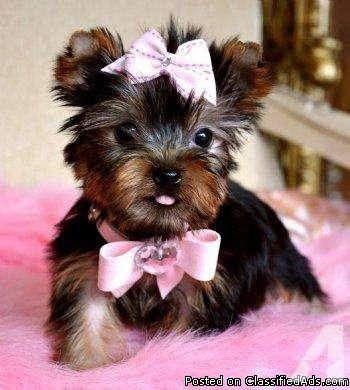 Pretty Baby!!!