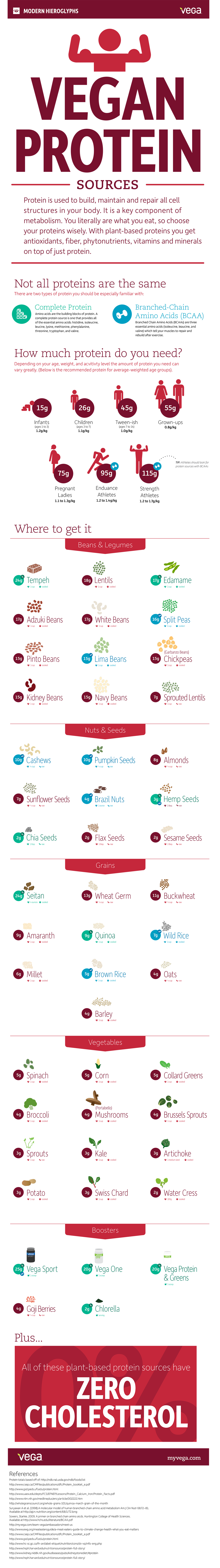 Best Vegan Protein Sources Infographic In
