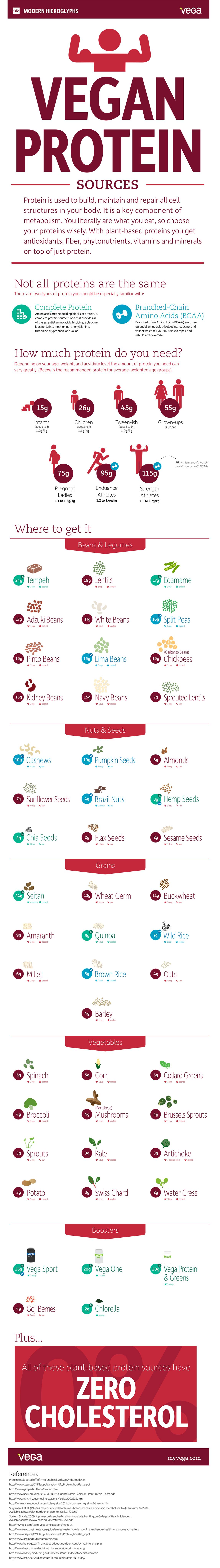 Best Vegan Protein Sources Infographic In