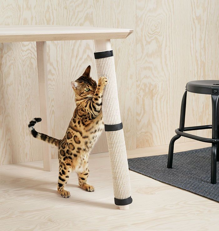 IKEA Just Launched A Pet Furniture Collection And Animal Lovers