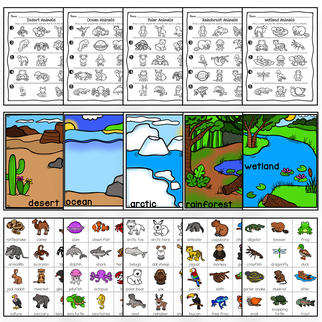 Animal Habitats Science Activity And Worksheets