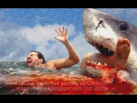 Worlds most dangerous sharks to attack humans. Description ...