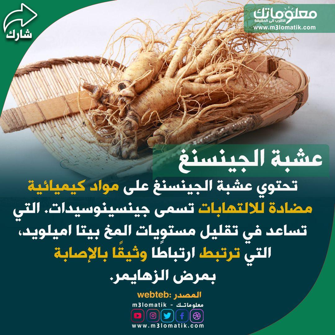 عشبة الجينسنغ Herbs Food Dill